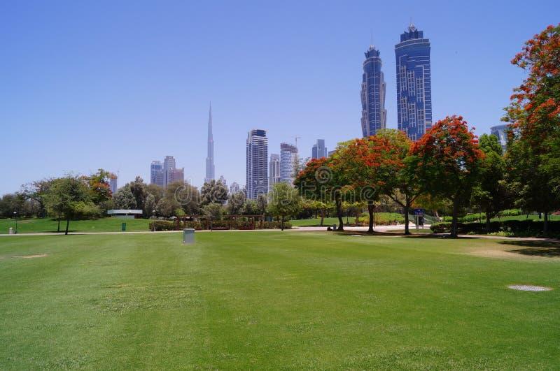 Het Park van Doubai Safa stock afbeelding