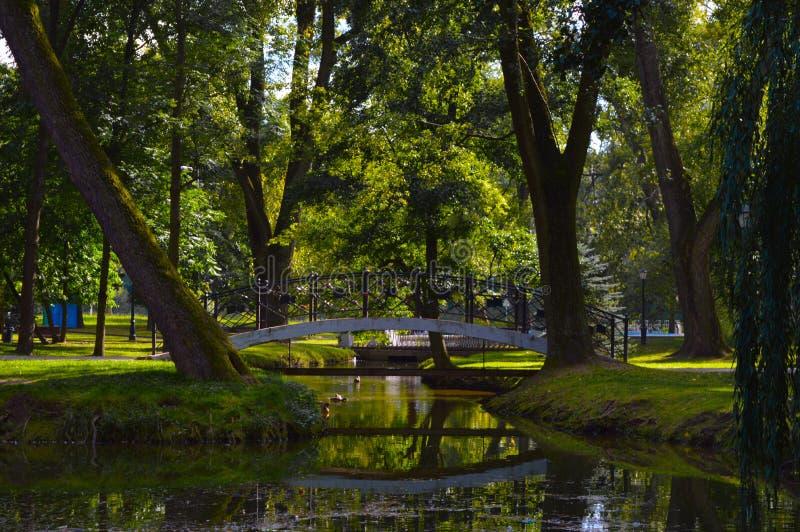 Het park van Gorky in Minsk, Wit-Rusland stock afbeelding