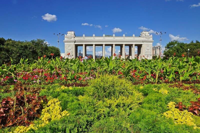 Het Park van Gorky in Moskou, Rusland stock fotografie