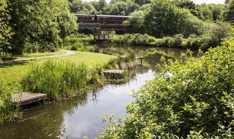 Het Park van het bramenland, begraaft, Engeland royalty-vrije stock fotografie