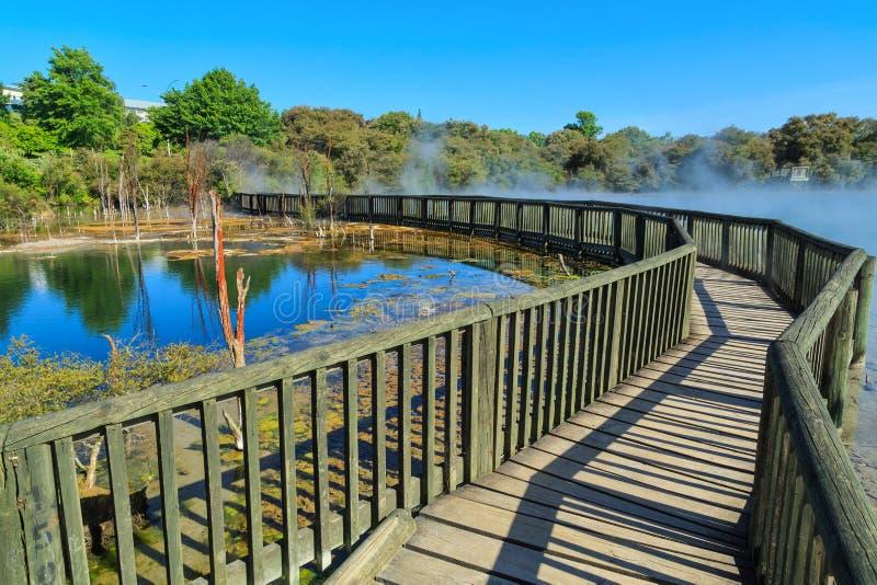 Het Park van Kuirau, Rotorua, Nieuw Zeeland Gang over het stomen van geothermisch meer royalty-vrije stock fotografie