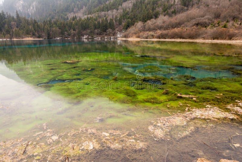 Het park van meerjiuzhaigou stock foto