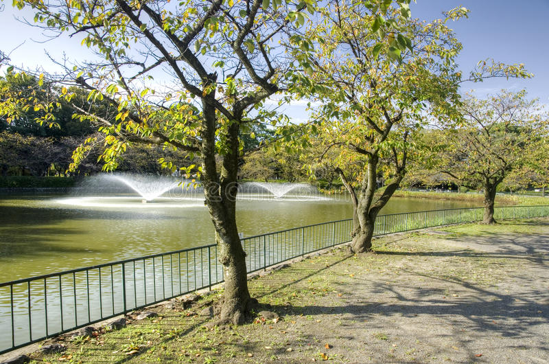 Het park van Nagoya - Meijo-, Japan royalty-vrije stock fotografie