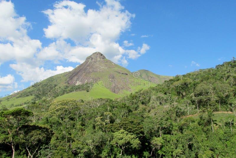 Het Park van Trespicos, Atlantisch Regenwoud, Brazilië stock afbeelding