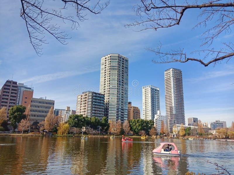 Het Park van Ueno royalty-vrije stock foto's