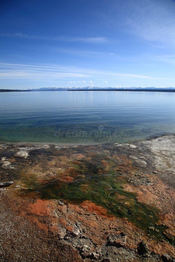 Het Park van Yellowstone - het Bassin van de Geiser van de Duim van het Westen royalty-vrije stock afbeelding