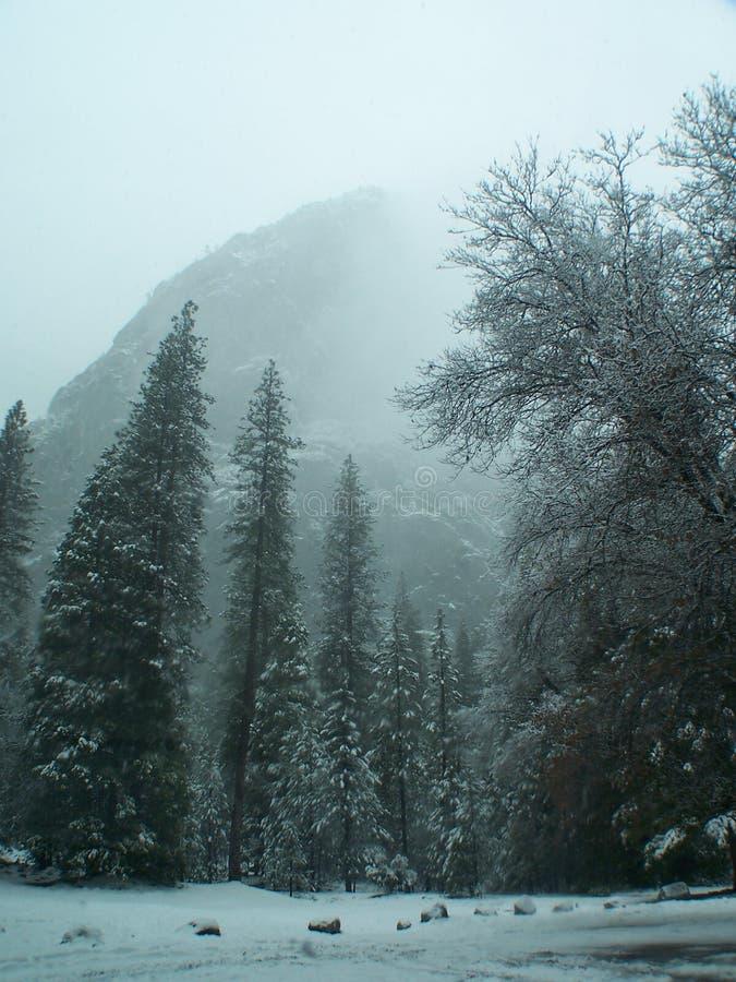 Het park van Yosemite in zeug. stock afbeeldingen