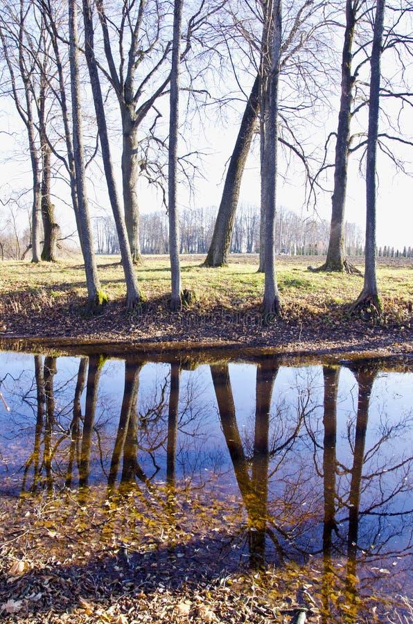 Het parklandschap van de herfst met vijver stock afbeelding