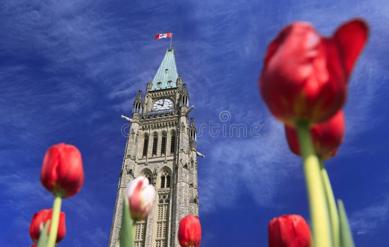 Het Parlement van Canada in de Lente stock afbeeldingen