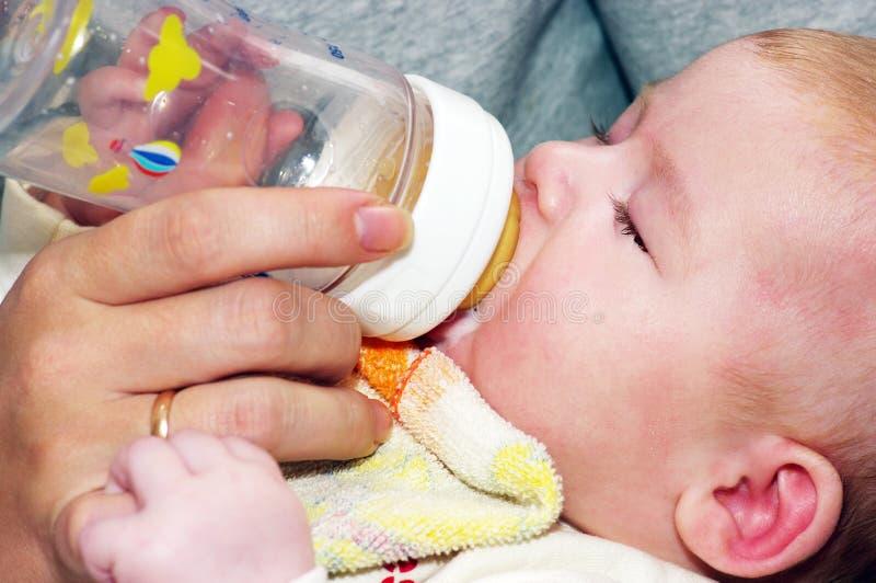 Het pasgeboren eten stock foto's