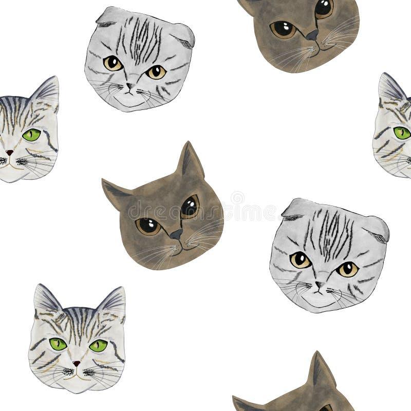 Het patroon met de snuiten van drie met de hand getrokken katten, tellers royalty-vrije stock fotografie