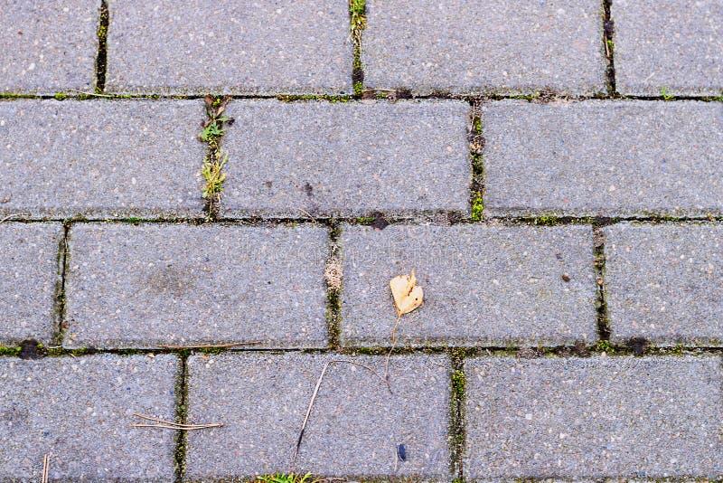 Het patroon van baksteenblok op gang, driehoeksblok is verschil, de textuur van zigzagblokken stock foto