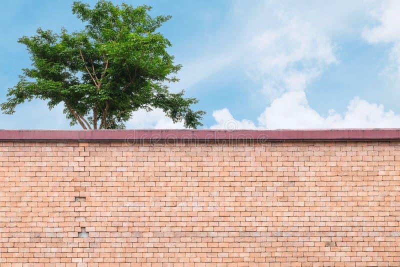 Het patroon van de close-upbaksteen bij de bruine bakstenen muur van omheining met groene boom en blauwe hemel met wolken geweven royalty-vrije stock foto's