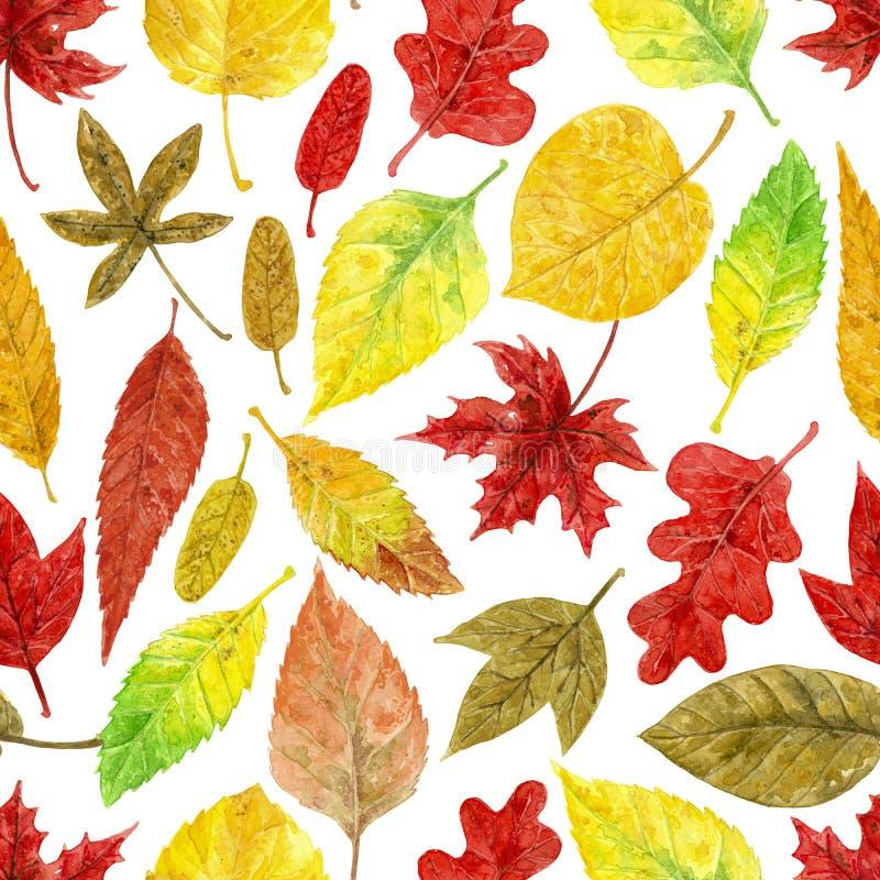 Het patroon van de de herfstwaterverf stock fotografie