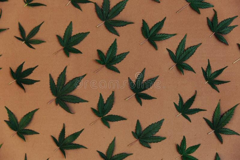 Het patroon van een cannabis gaat weg Het Onkruid van de Ganjamarihuana stock afbeeldingen