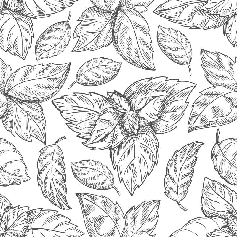 Het patroon van het muntblad De schets vectorachtergrond van pepermuntbladeren voor thee verpakkend document vector illustratie