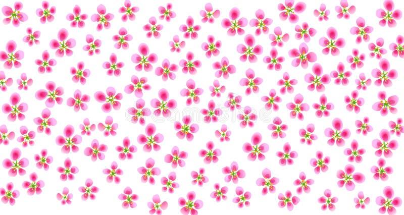 Het patroon van Sakura vector illustratie