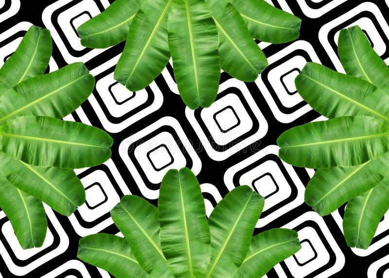 Het patroonachtergrond van het banaanblad stock afbeeldingen