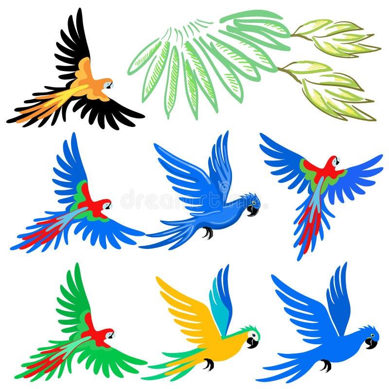 Het patroonreeks van de arapapegaai royalty-vrije illustratie
