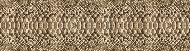 Het patroontextuur van de slanghuid naadloos herhalen Vector Textuurslang Modieuze druk modieuze en modieuze achtergrond