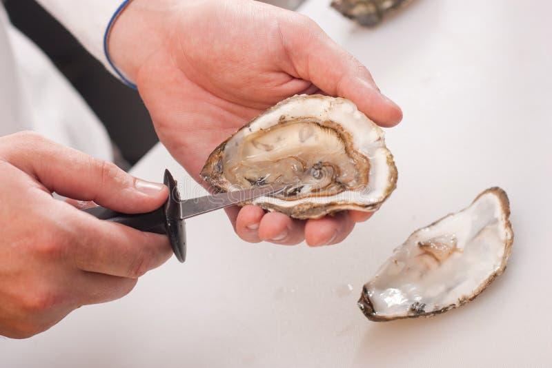 Het pellen van oester stock foto