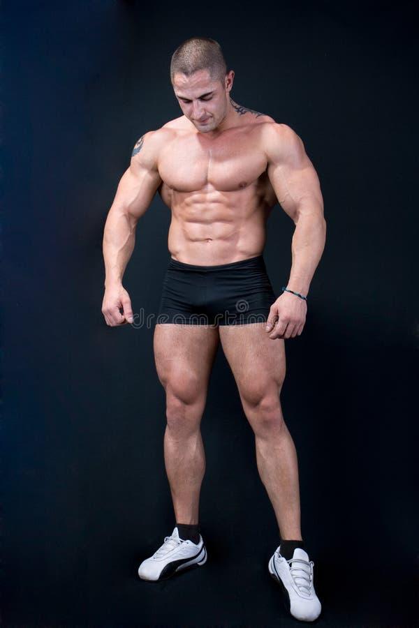 Het perfecte mannelijke lichaam stock fotografie