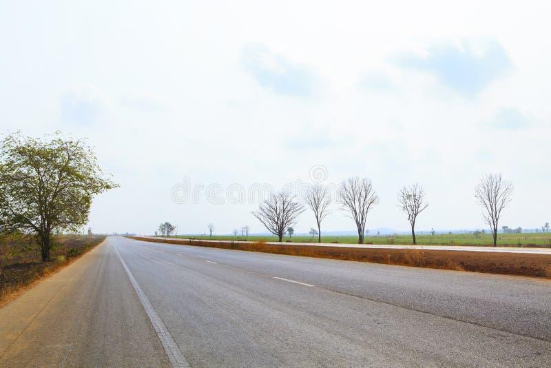 Het perspectief van de asfaltweg aan horizon door gecultiveerd gebied tegen bewolkte hemel royalty-vrije stock foto's
