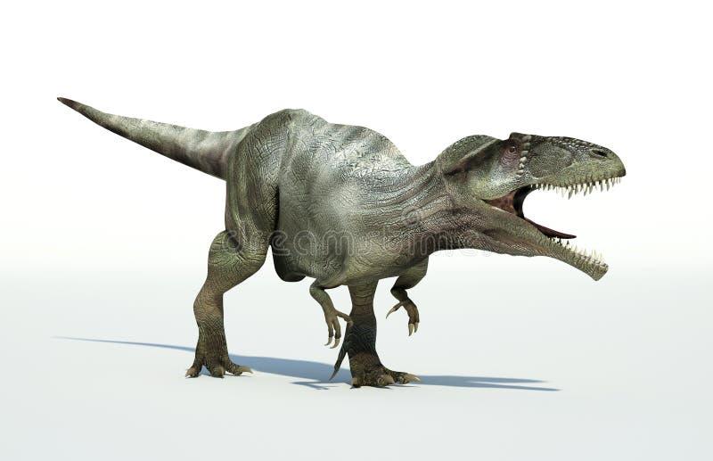 Het Photorealistic 3 D teruggeven van een Giganotosaurus. royalty-vrije illustratie