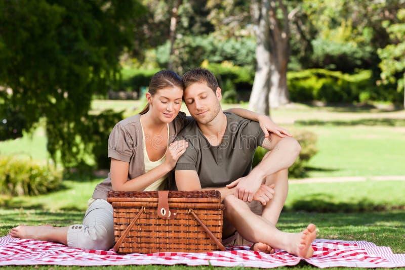 Het picnicking van het paar stock afbeeldingen