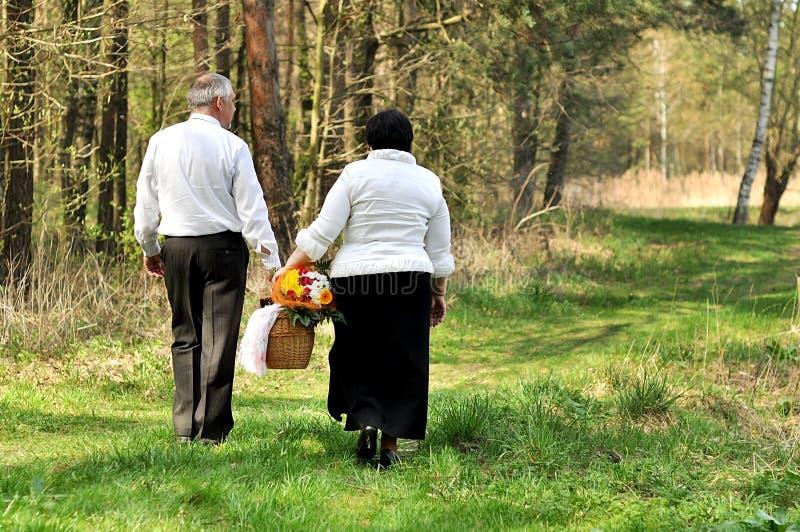 Het picnicking van het paar in het bos stock afbeelding
