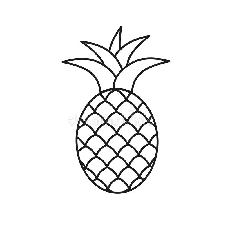 Het pictogram van het ananassymbool Het tropische exotische vectorpictogram van de fruit eenvoudige lijn royalty-vrije illustratie