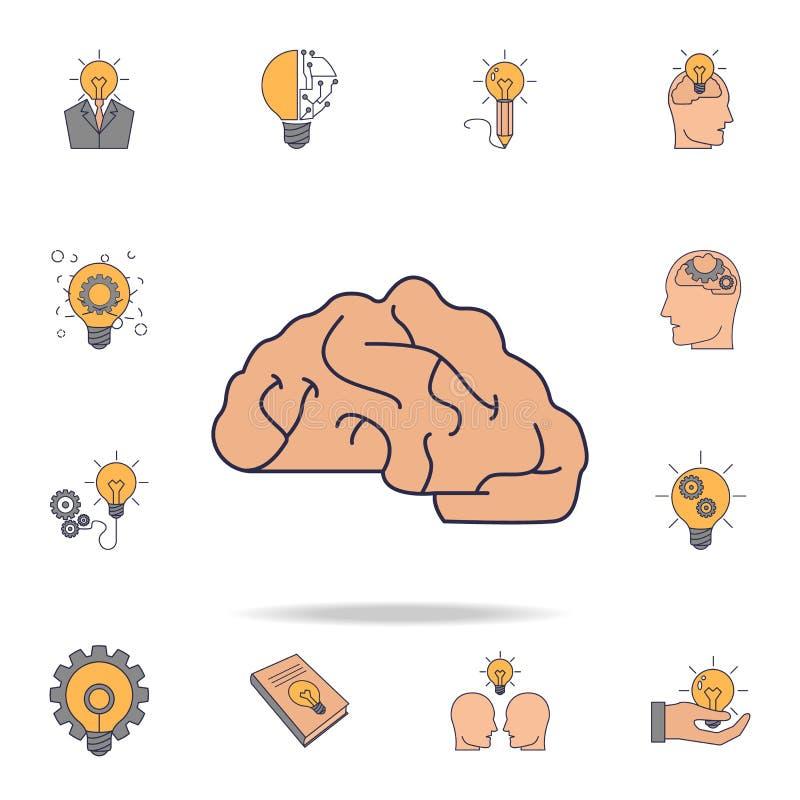 het pictogram van de hersenen fild kleur Gedetailleerde reeks pictogrammen van het kleurenidee Premie grafisch ontwerp Één van de vector illustratie