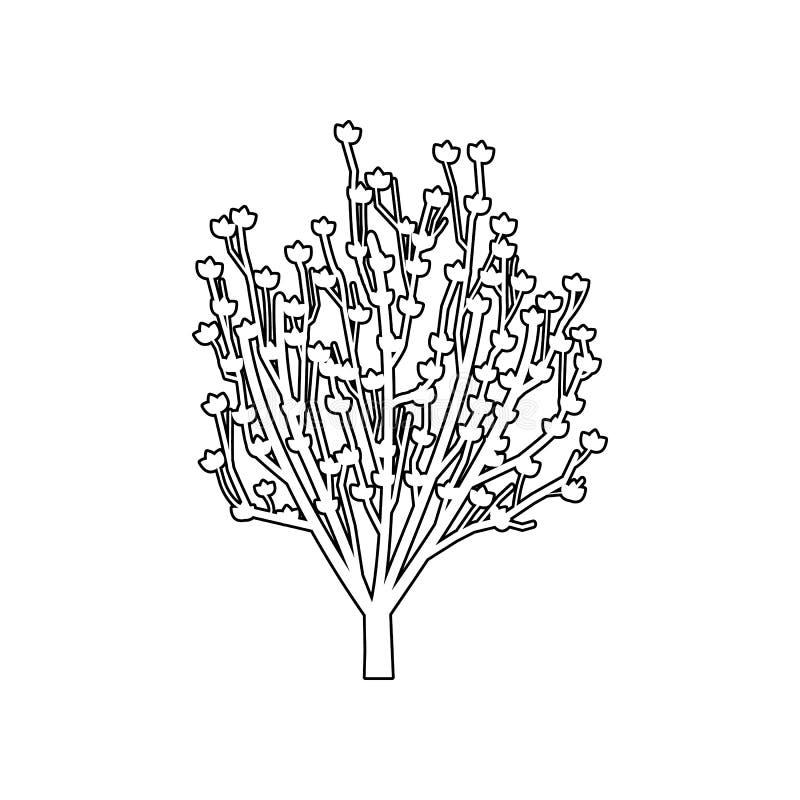 Het pictogram van de magnoliaboom Reeks van silhouet van boompictogrammen Van de de Premiekwaliteit van Webpictogrammen het grafi stock illustratie