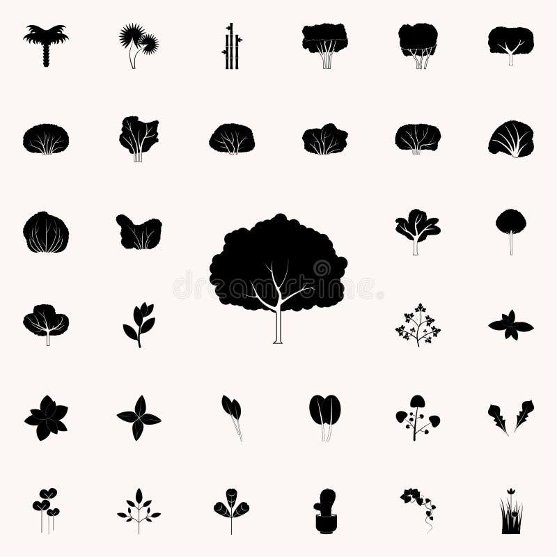 Het pictogram van de perenboom Voor Web wordt geplaatst dat en het mobiele algemene begrip van installatiespictogrammen royalty-vrije illustratie