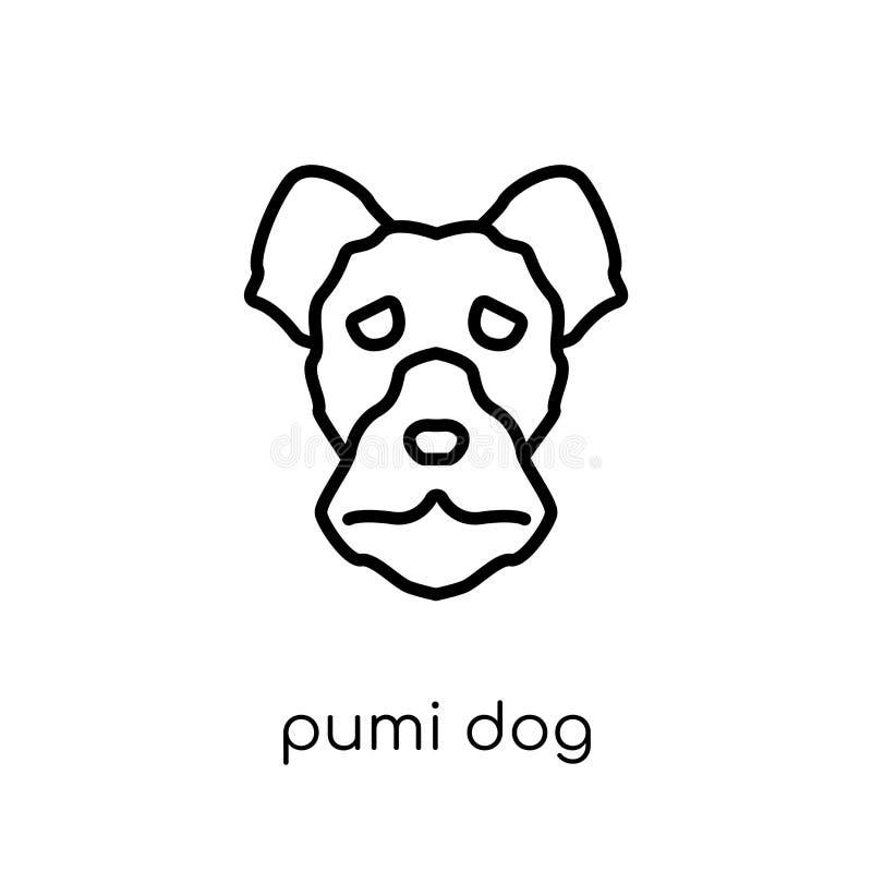 Het pictogram van de Pumihond In modern vlak lineair vectorpumi-hondpictogram  stock illustratie