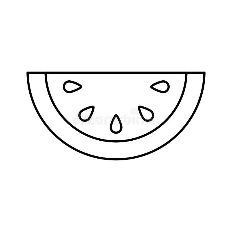 Het pictogram van het meloen verse fruit vector illustratie