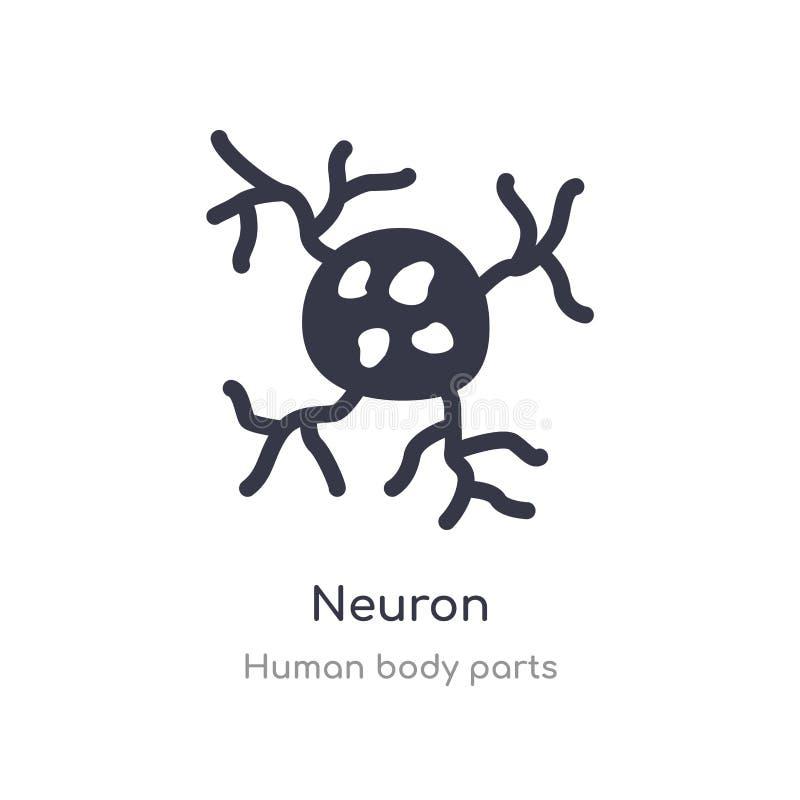 het pictogram van het neuronenoverzicht r het editable dunne pictogram van het slagneuron op wit vector illustratie