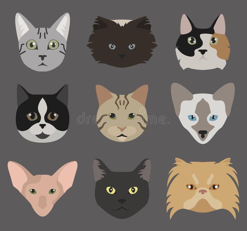 Het pictogram vastgestelde vlakke stijl van kattenrassen royalty-vrije illustratie