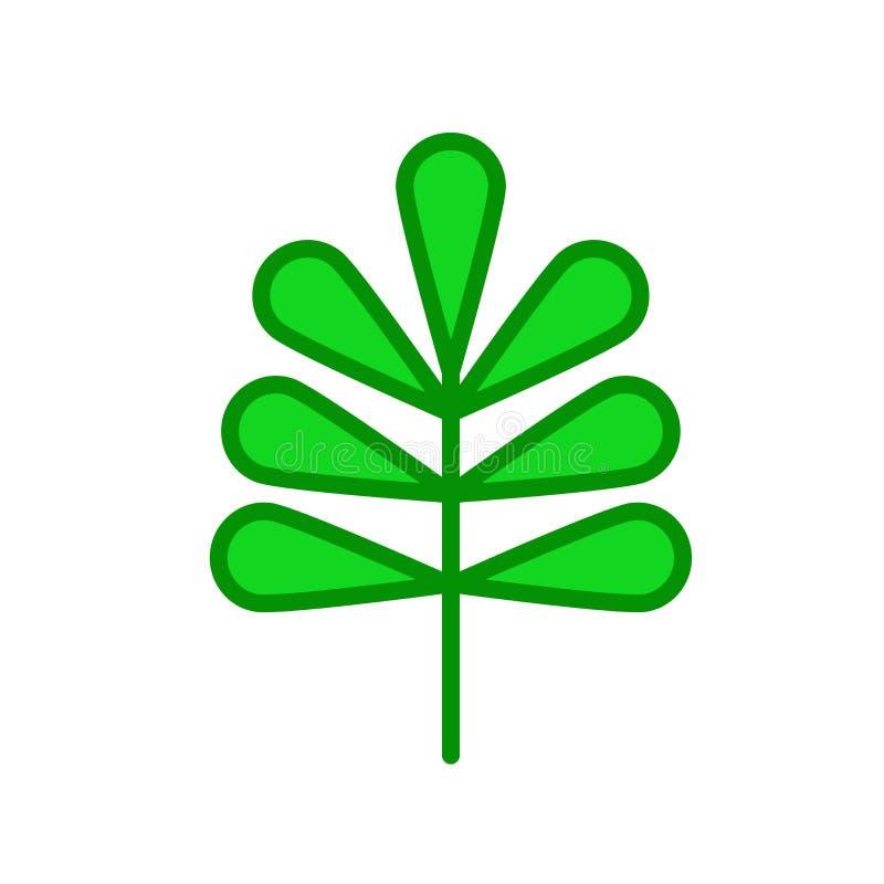 Het pictogram vectordieteken en symbool van het pecannootblad op witte backgro wordt geïsoleerd vector illustratie