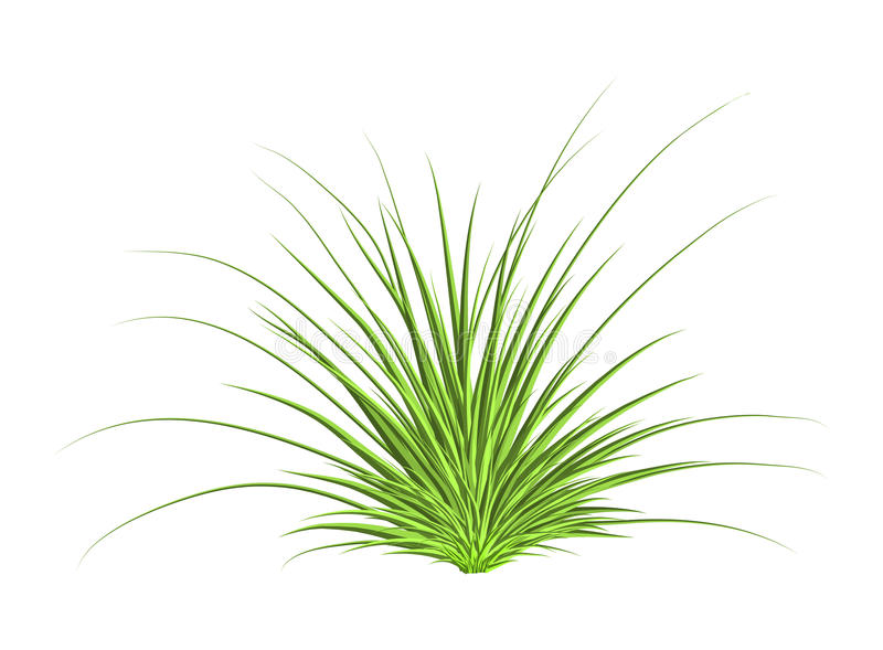 Het pictogramontwerp van het gras vectorsymbool Mooie geïsoleerde illustratie vector illustratie