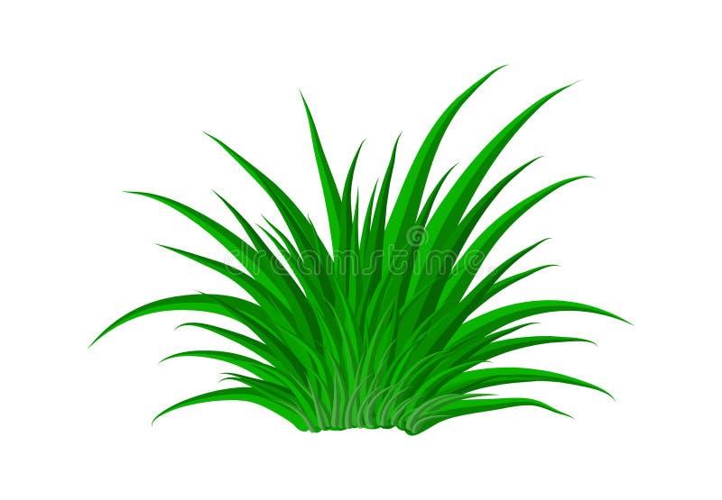 Het pictogramontwerp van het gras vectorsymbool Mooie geïsoleerde illustratie stock illustratie