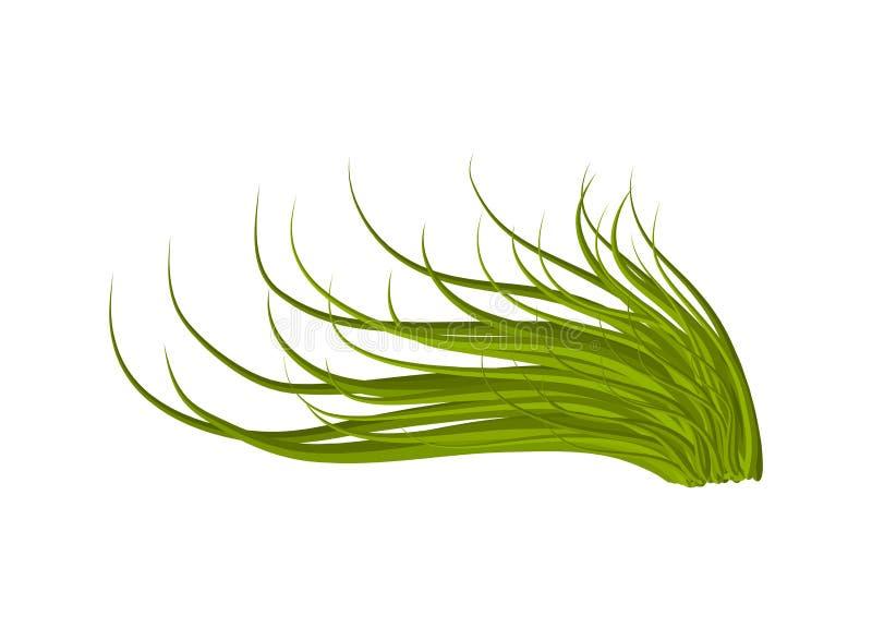 Het pictogramontwerp van het gras vectorsymbool Mooie geïsoleerde illustratie royalty-vrije illustratie