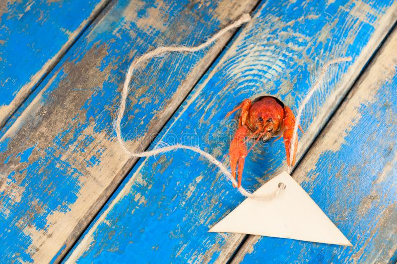 Het piepen uit een gaten rode gekookte rivierkreeft met lege pakpapierdriehoek en kabel royalty-vrije stock afbeeldingen
