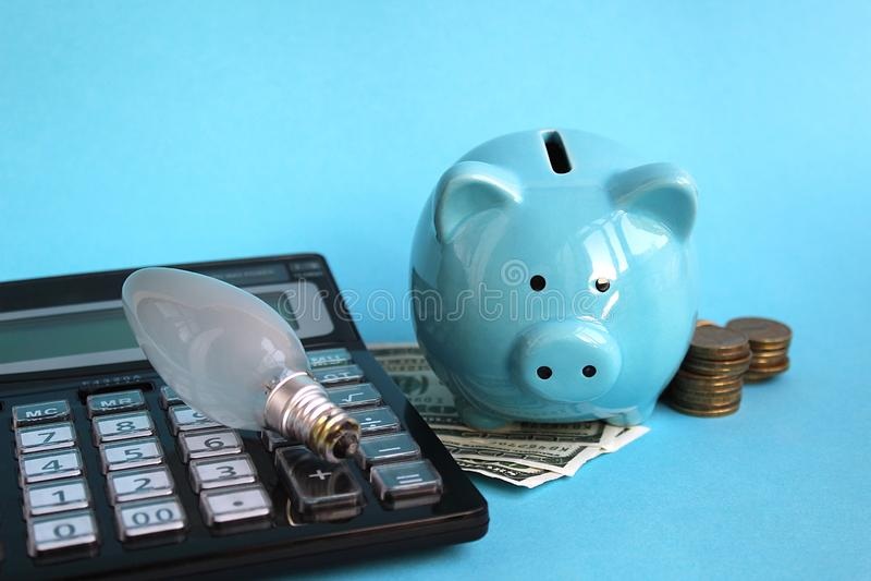 Is het Piggy piggy varken op geld de moeite waard royalty-vrije stock afbeelding