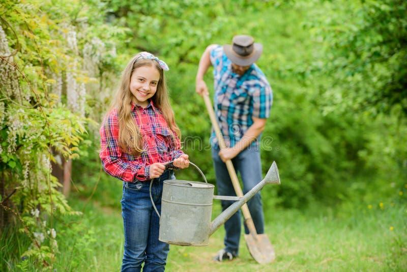 Het planten van bloemen Familiepapa en dochter die installaties planten Het overplanten van groenten van kinderdagverblijf tuinie royalty-vrije stock foto