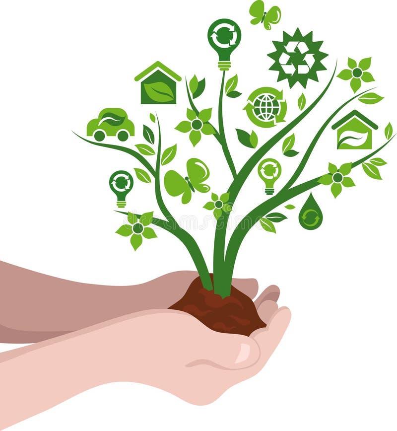 Het planten van het concept van bomeneco royalty-vrije illustratie