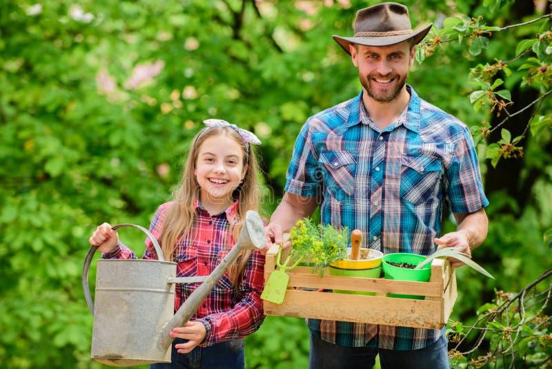 Het planten van seizoen Familietuin Handhaaf tuin Het planten van bloemen Familiepapa en dochter die installaties planten stock foto
