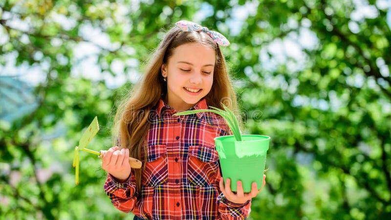 Het planten van seizoen r r stock afbeelding