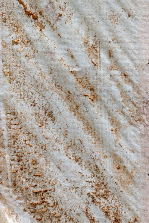 Het plastic water afdekken behandeld in termiet het dalen en het houten scheren royalty-vrije stock foto's