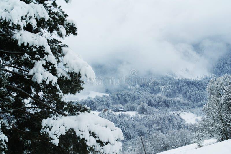 Het Platteland van alpen royalty-vrije stock afbeelding